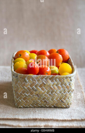 juicy red and yellow cherry tomatoes in woven basket against cream cloth background - Stock Image