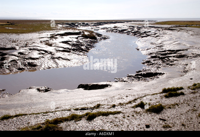 Tidal foreshore at the edge of Newport Wetlands National Nature Reserve Newport South East Wales UK - Stock Image