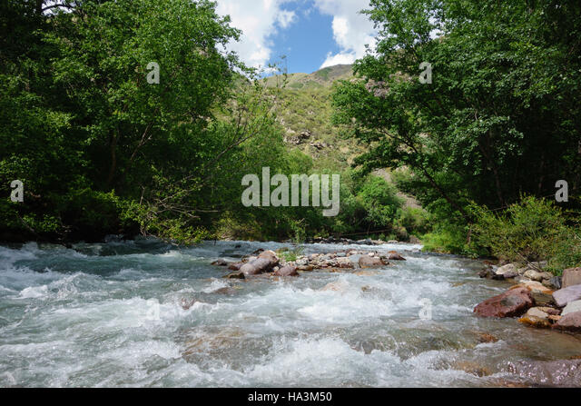 Mountain river in Turgen Gorge near Almaty, Kazakhstan - Stock Image