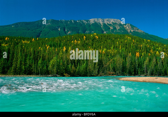 Kicking Horse River, Yoho National Park, British Columbia, Canada - Stock Image