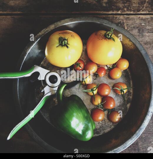 Vegetables harvested from an urban garden. - Stock-Bilder