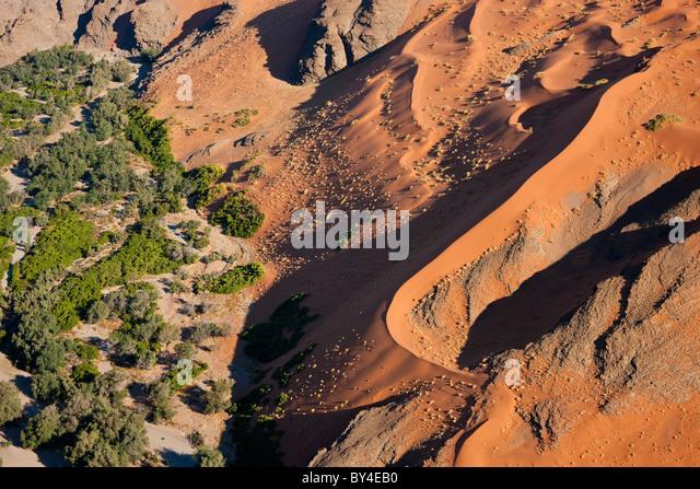 Desert & fertile land, Namib Desert, Namibia aerial view - Stock Image