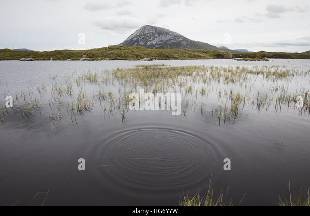 View of Mount Errigal from sleeve snaght loch. Glenveagh national park, County Donegal, Ireland. - Stock-Bilder