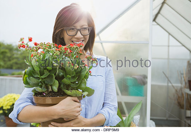 Gardener holding potted plant outside of greenhouse - Stock Image