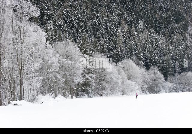 Jogger runs through stunning snowy winter landscape. - Stock-Bilder