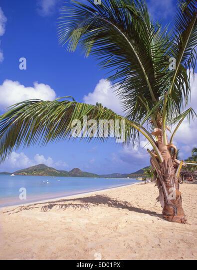 Beach view, Jolly Beach Resort & Spa, Saint Mary's Parish, Antigua, Antigua and Barbuda, Lesser Antilles, Caribbean - Stock Image