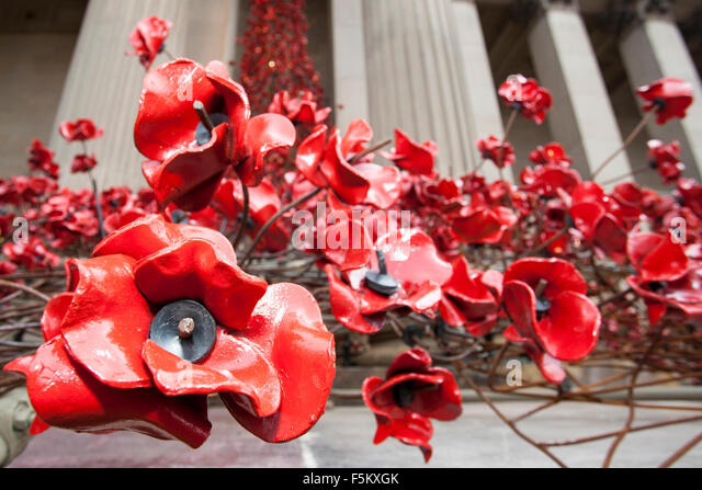 Liverpool, Merseyside, UK. 6th November, 2015. The 'Weeping Window' poppy installation at St. Georges Hall - Stock Image