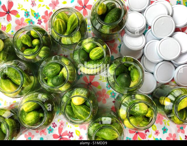 Cucumbers in the glass jar - Stock Image