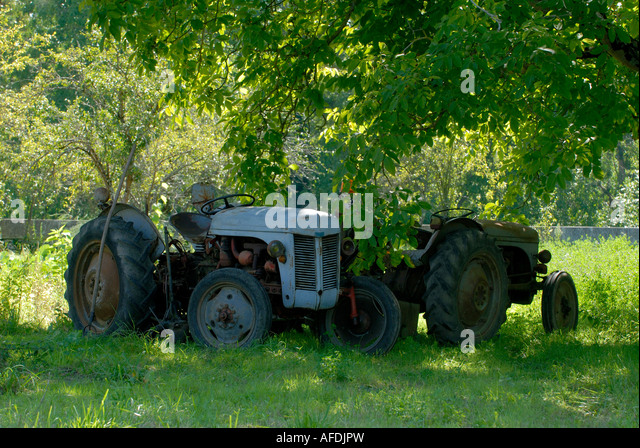 Two old tractors under Walnut trees, Indre, France. - Stock Image