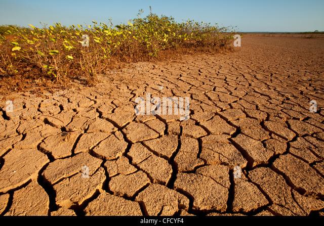 Landscape in Sarigua national park (desert) in Herrera province, Republic of Panama. - Stock Image
