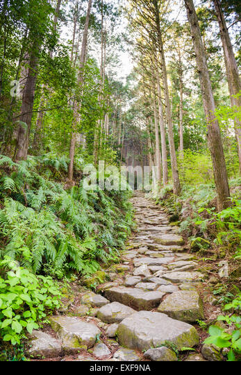 Matsumoto Pass on the Kumano Kodo, a sacred trail and World Heritage site  near Kumano City, Japan. - Stock Image