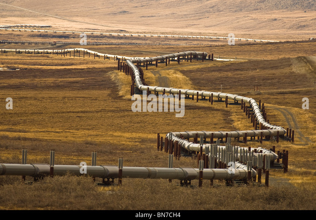 Alaska Oil Pipeline as it winds through the foothills north of the Brook Range north of the Arctic Circle, Alaska - Stock Image