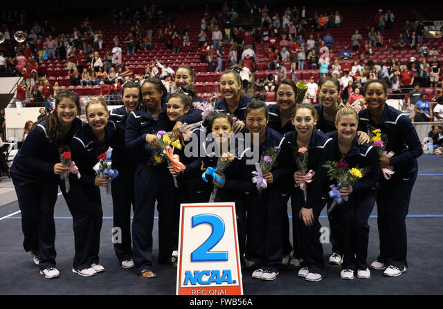 April 2, 2016: The University of California Berkeley gymnastics team celebrates at the NCAA Tuscaloosa Regional - Stock Image