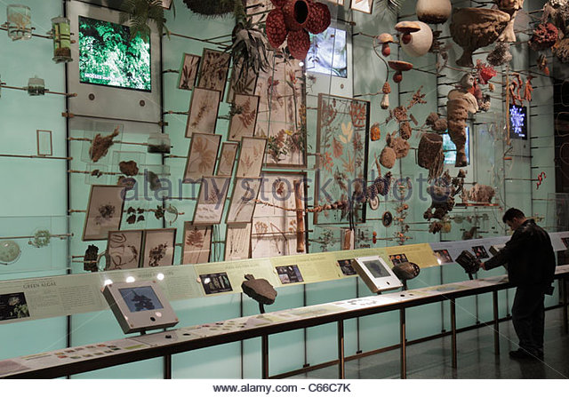 Manhattan New York City NYC NY Uptown Central Park West American Museum of Natural History interactive exhibit science - Stock Image