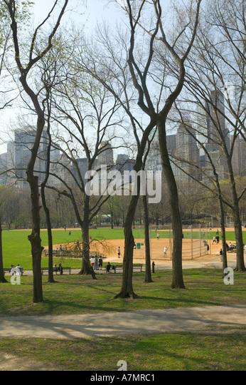 Baseball Cafe Central Park