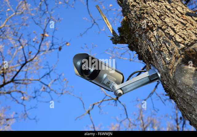 Video Surveillance,Security - Stock Image