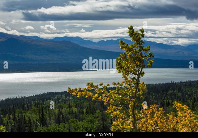 Dezadeash Lake, Yukon Territories, Canada - Stock Image