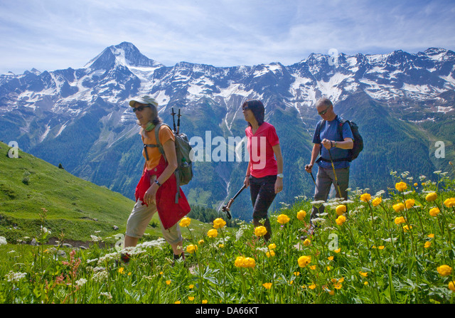 Walking, Hiking, Lötschentaler height way, height way, view, Bietschhorn, canton, Valais, mountain, mountains, - Stock Image
