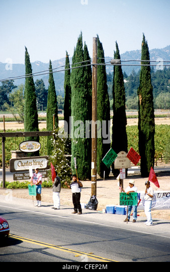 Protesting vineyard  workers in Nappa Valley   CA  USA - Stock-Bilder