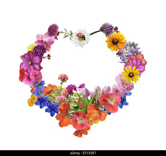 Assorted Flowers In Heart Shape - Stock Image