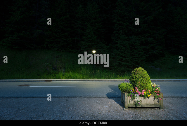 Box of flowers by roadside, Salzburg, Austria - Stock Image