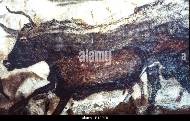 Lascaux cave painting Bull Dordogne France  Copyright AAA Collection - Stock-Bilder
