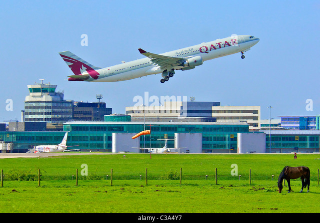 Qatar Airbus A330-302 takes off at Manchester as a horse grazes in a nearby field. - Stock Image