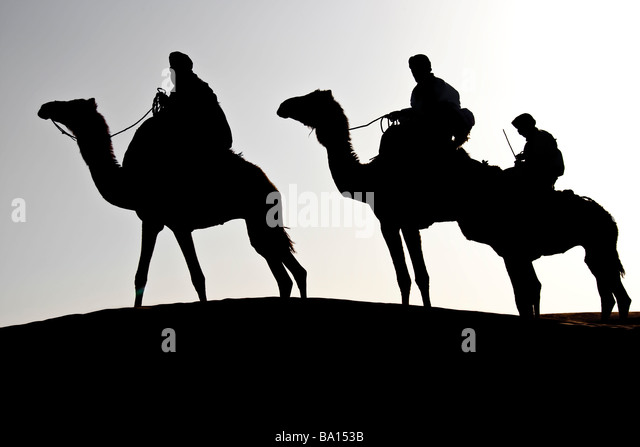 silhouette of three man on camel in the desert - Stock Image