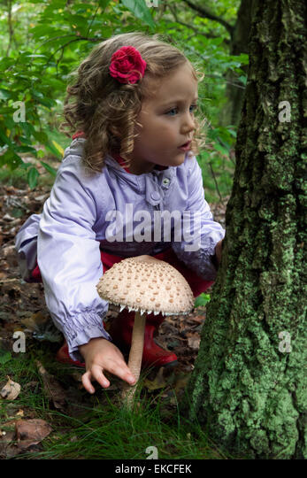 Young girl in the woods picking mushrooms - Stock Image