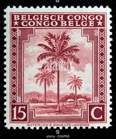 Oil Palms, postage stamp, Belgian Congo, 1942 - Stock-Bilder