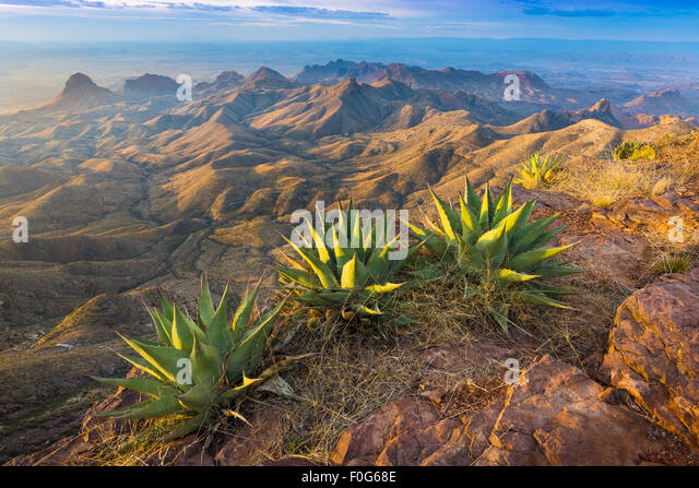Big Bend National Park in Texas is the largest protected area of Chihuahuan Desert the United States. - Stock Image