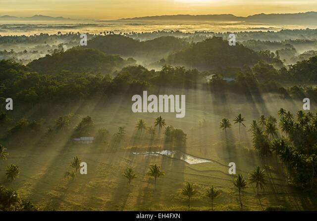 Philippines, Visayas archipelago, Bohol island, Carmen area, paddy field in the Chocolate Hills at sunrise - Stock Image