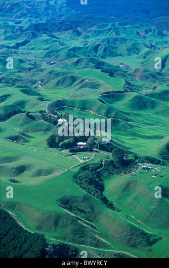 aerial photo agriculture clearing deforestation environment fields hill negative New Zealand north island p - Stock Image