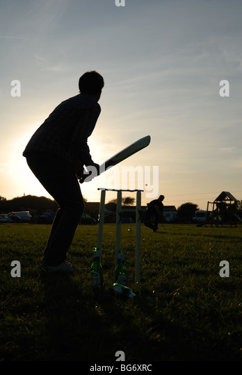 Cricket - Stock Image