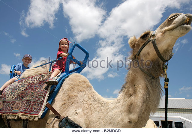Wisconsin Kenosha Kenosha County Fairgrounds The Ultimate Kid Fest family event camel animal ride boy - Stock Image