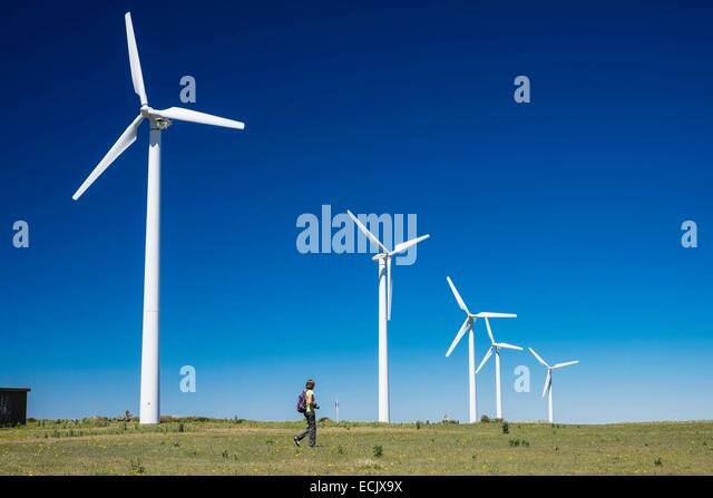 Portugal, Madeira island, Paul da Serra plateau in the centre of the island, wind farm - Stock Image
