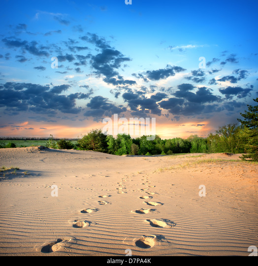 Footprints in the sand in desert at sunset - Stock Image