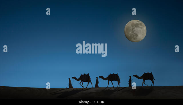 Camel caravan with night sky and full moon, Dubai, United Arab Emirates - Stock Image