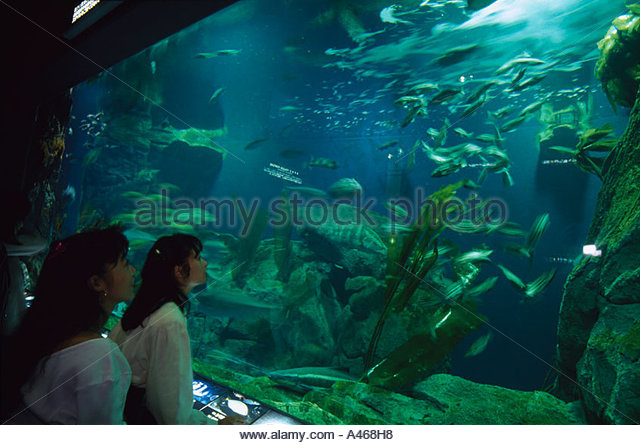 Toba Japan Stock Photos & Toba Japan Stock Images - Alamy