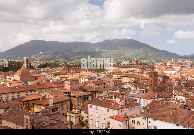 The rooftops of the historic centre of Lucca, Tuscany, Italy, Europe - Stock Image