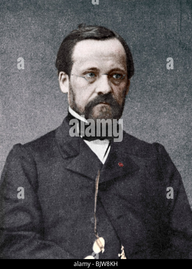 Louis Pasteur, French microbiologist and chemist, 19th century. - Stock Image