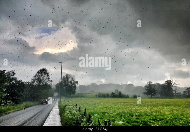 Heavy rain in U.K. Summer storm - Stock Image