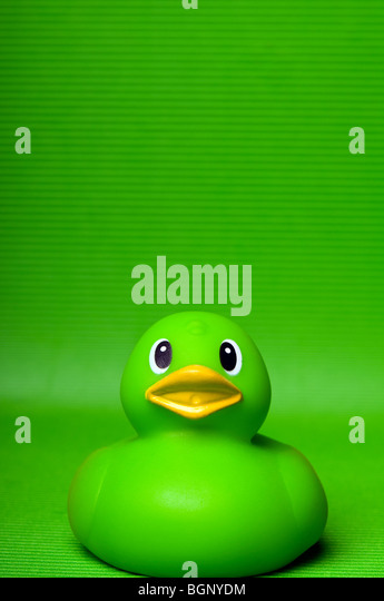 toy rubber duck - Stock Image