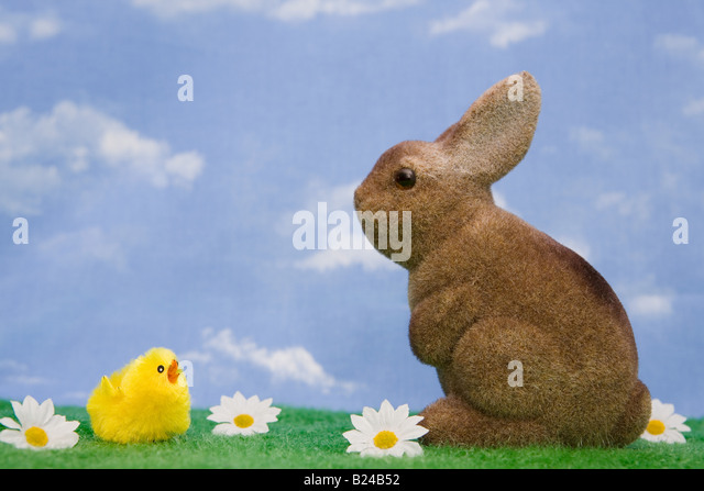A rabbit and chick - Stock Image
