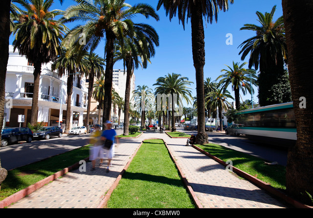 The Boulevard de Rachidi, a typical wide tree lined street in the smart Lusitania district, Casablanca, Morocco, - Stock Image