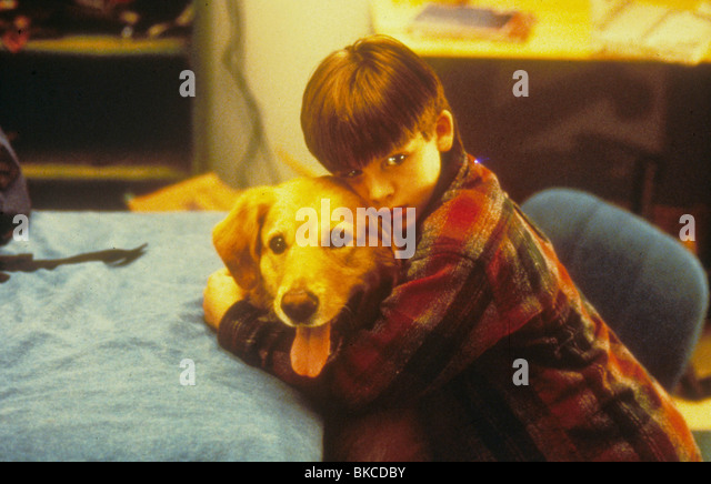 kevin zegers air bud stock photos amp kevin zegers air bud