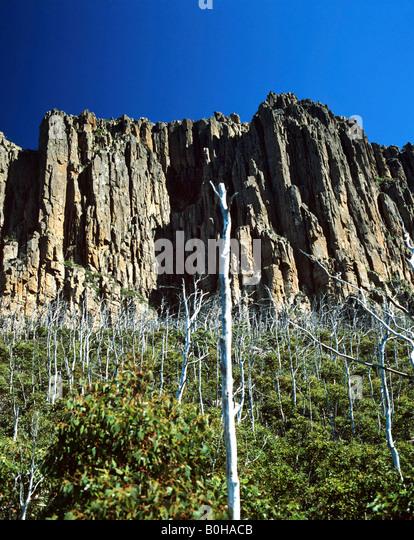 Mount Wellington, Hobart, Tasmania, Australia - Stock-Bilder