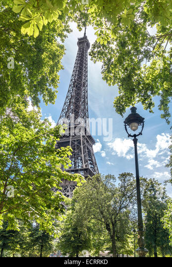 Paris. Eiffel Tower View through the trees. Eiffel Tower Paris framed by green leaves in June. - Stock Image