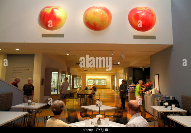 Portland Maine Congress Square Portland Museum of Art cafe restaurant giant apples tables - Stock Image
