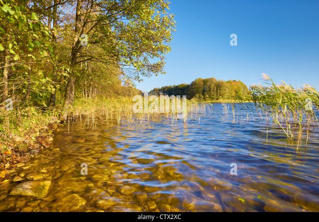 Suwalki Landscape Park, Czarna Hancza Lake, Poland, Europe - Stock Image